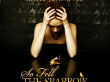"AVAILABLE NOW IN AUDIOBOOK! Chilling Paranormal Romance ""So Fell The Sparrow"""